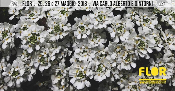 Flor 2018